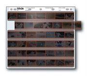 Holds six 35mm strips of 7 frames, 42 frames total